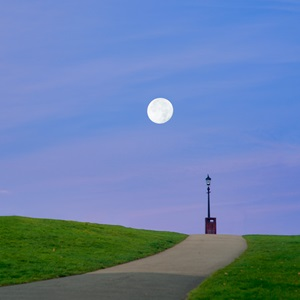 Moontlight on the HIll